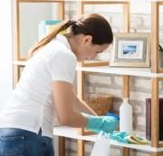 Проблемы с чистотой в квартире - пригласите профессионалов
